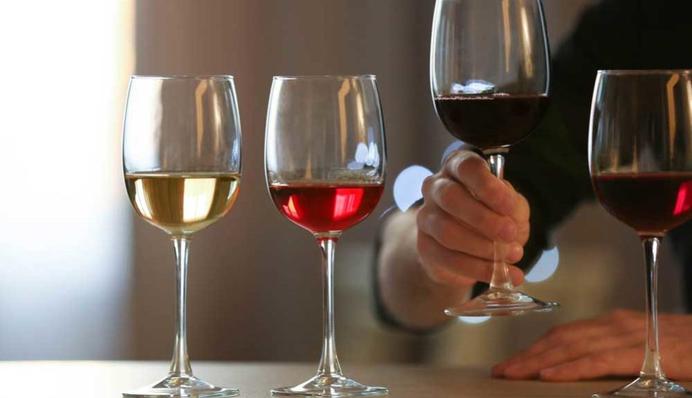 degustacion-vinos-riojanos