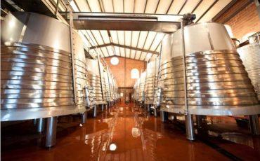 barricas-fermentacion